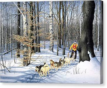 Dog-sled Racing Canvas Print by Conrad Mieschke