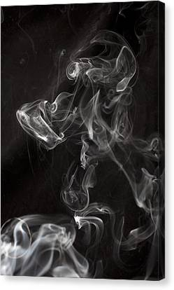 Dog Smoke Canvas Print by Garry Gay
