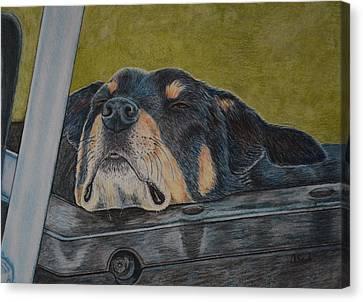 Dog Tired Canvas Print
