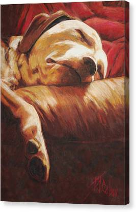 Dog Tired Canvas Print by Billie Colson