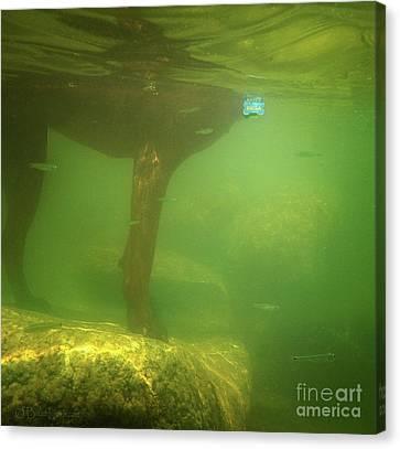 Dog Underwater Shot Canvas Print