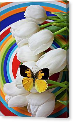 Dogface Butterfly On White Tulips Canvas Print by Garry Gay