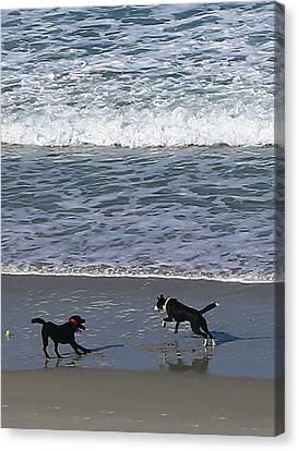 Canvas Print featuring the photograph Doggie Fun by Nareeta Martin