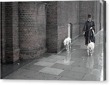 Doggie Strolling 1 Canvas Print by Jez C Self