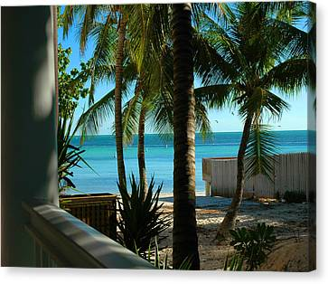 Dog's Beach Key West Fl Canvas Print by Susanne Van Hulst
