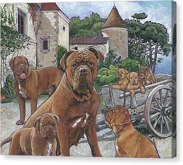 Dogue De Bordeaux Canvas Print by Nadi Spencer