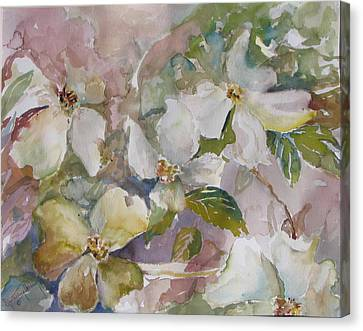 Dogwood Canvas Print by Dorothy Herron