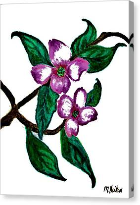 Dogwood Favorite Canvas Print by Marsha Heiken