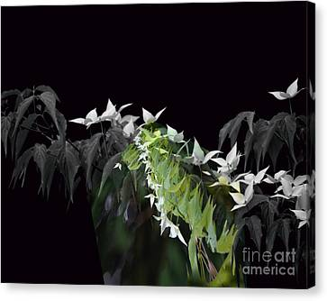 Dogwood Shades Of Grey Canvas Print