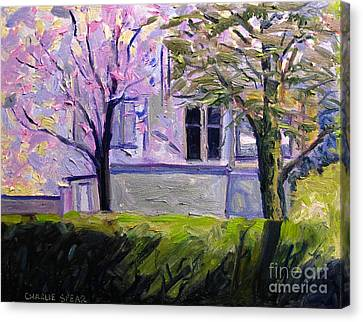 Artistic License Canvas Print - Dogwoods And Mimosa In Bloom by Charlie Spear