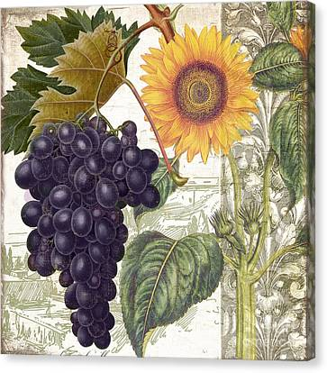 Dolcetto I Canvas Print by Mindy Sommers