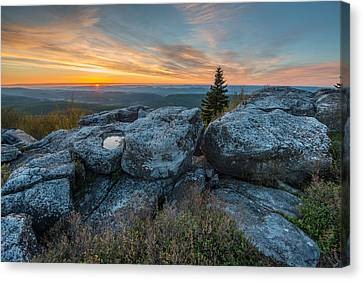 Monongahela National Forest Dolly Sods Wilderness Sunrise Canvas Print