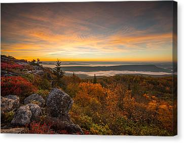 Dolly Sods Wilderness Peak Fall Sunrise Canvas Print