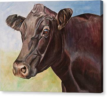 Dolly The Angus Cow Canvas Print by Toni Grote