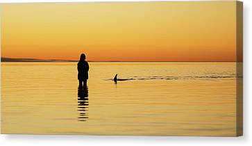 Dolphin And Girl Canvas Print by Gary Wright