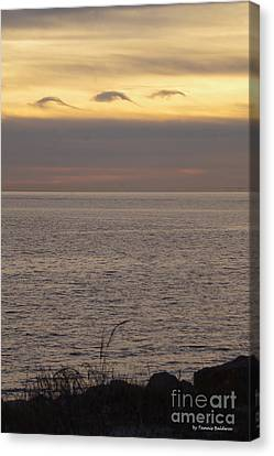 Canvas Print - Dolphin Cloud Sunset by Tannis Baldwin