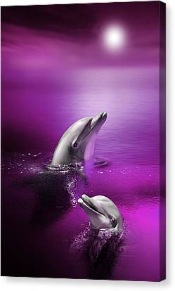 Dolphin Delights Canvas Print by Julie L Hoddinott