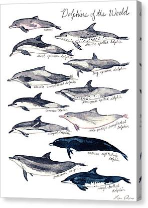 Dolphins Of The World Illustrated Chart Nautical Marine Biology Ocean Life Canvas Print by Laura Row