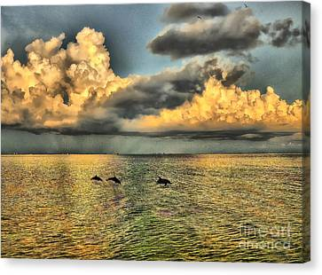 Dolphins Play At Sanibel Island Canvas Print by Jeff Breiman