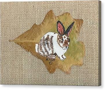 domestic Rabbit Canvas Print