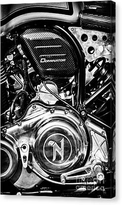 Canvas Print featuring the photograph Dominator by Tim Gainey