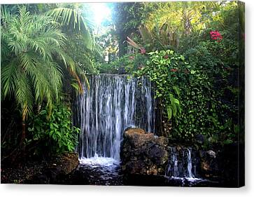 Canvas Print featuring the photograph Dominica by Denise Moore