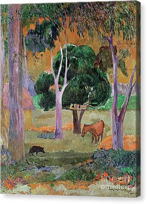Post-impressionist Canvas Print - Dominican Landscape by Paul Gauguin