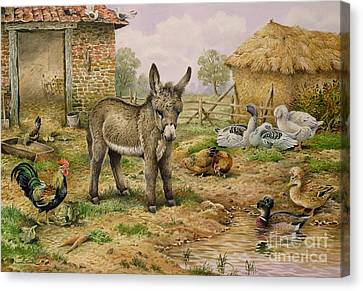 Donkey And Farmyard Fowl  Canvas Print by Carl Donner