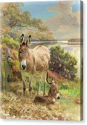 Canvas Print featuring the digital art  Donkey And Foal by Trudi Simmonds