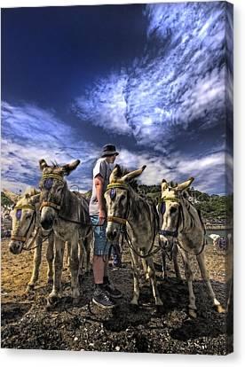 Donkey Rides Canvas Print by Meirion Matthias