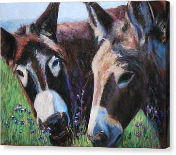 Donkey Tonk Canvas Print by Billie Colson