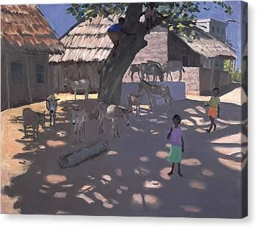 Donkeys Lamu Kenya Canvas Print by Andrew Macara