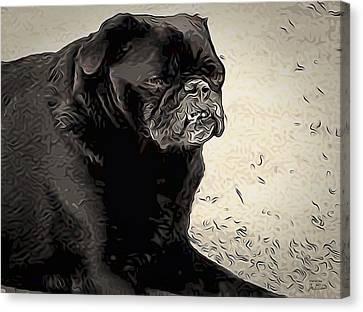 Donnas Bulldog Canvas Print