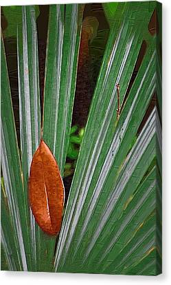 Canvas Print featuring the photograph Don't Leaf by Donna Bentley