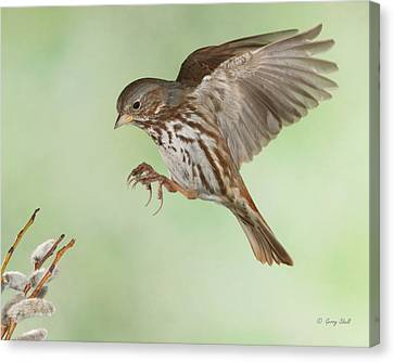 Canvas Print featuring the photograph Don't Squeeze The Charmin by Gerry Sibell