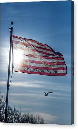Dont Tread On Me Canvas Print by Chris Bordeleau