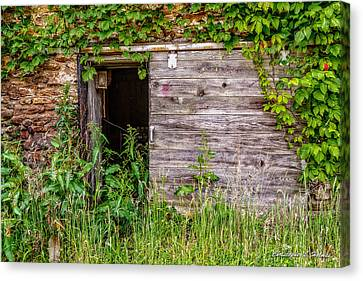 Canvas Print featuring the photograph Door Ajar by Christopher Holmes