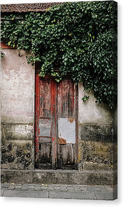 Canvas Print featuring the photograph Door Covered With Ivy by Marco Oliveira