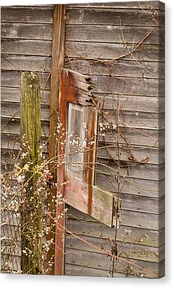 Door Of The Passed Canvas Print by Douglas Barnett
