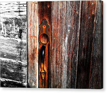 Door To The Past Canvas Print by Julie Hamilton
