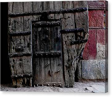 Door Within A Door Canvas Print by M G Whittingham
