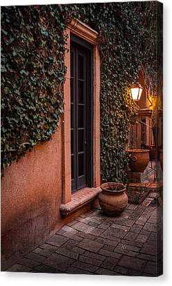 Doorway Through The Vines Canvas Print