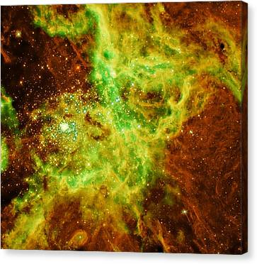 Doradus Nebula Canvas Print by American School