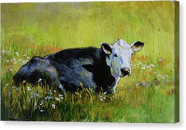Cow Canvas Print - Doris Takes A Break by Tracie Thompson