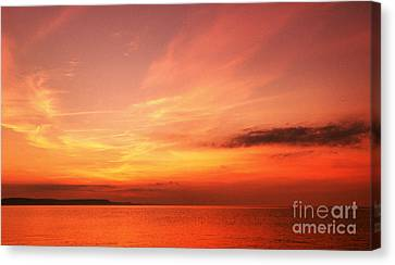 Dorset Delight Canvas Print by Stephen Melia