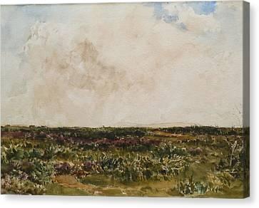 Collier Canvas Print - Dorset Landscape by MotionAge Designs