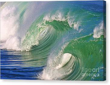 Double Barrel Canvas Print by Paul Topp