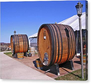 Double Barrels Canvas Print by Marian Bell