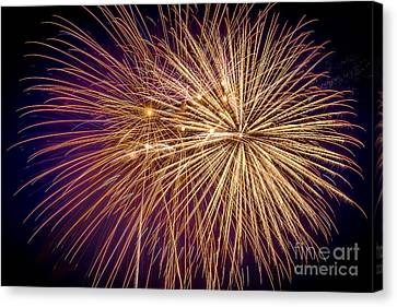 Pyrotechnic Canvas Print - It Went Boom by Lynn Sprowl