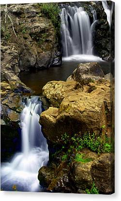 Double Drop Canvas Print by Marty Koch